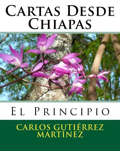 9781479347872: Cartas Desde Chiapas: El Principio: Volume 1