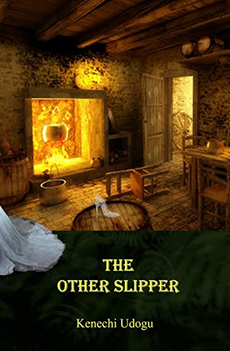 9781479390267: The Other Slipper
