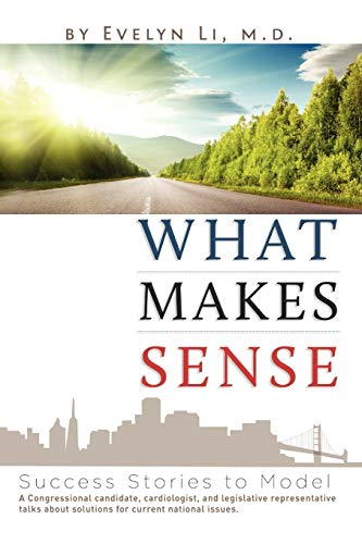 9781479709403: What Makes Sense: Success Stories to Model