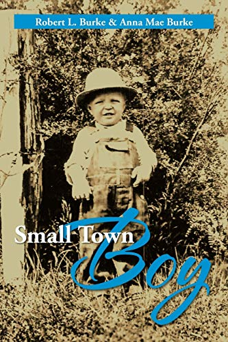 9781479761074: Small Town Boy
