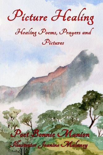 9781480177888: Picture Healing
