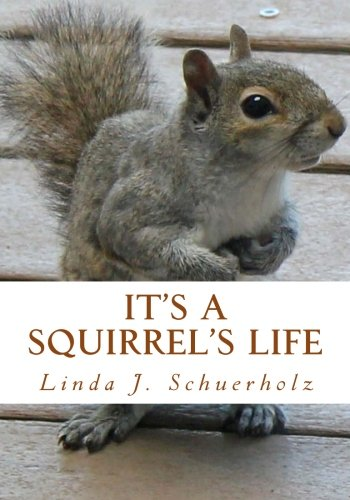 9781480204423: It's a Squirrel's Life: a Tale of Stress and Misunderstanding
