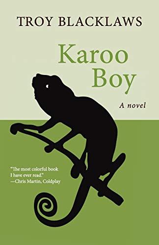 9781480417823: Karoo Boy