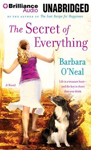 9781480511934: The Secret of Everything: A Novel