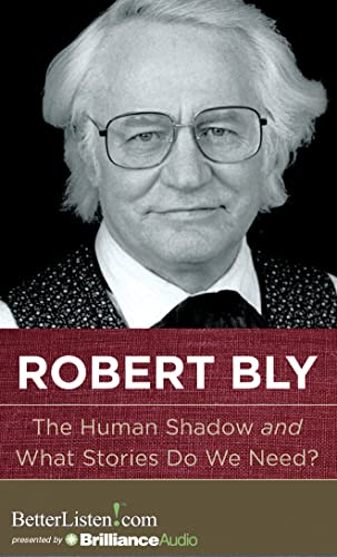 9781480512559: The Human Shadow and What Stories Do We Need?