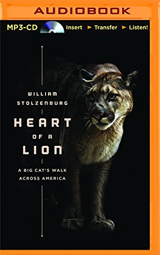 Heart of a Lion: A Lone Cat's Walk Across America: Will Stolzenburg; William Stolzenburg