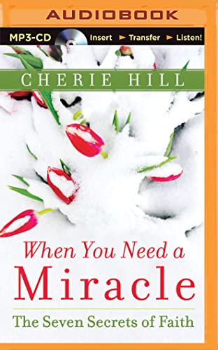 When You Need a Miracle: The Seven Secrets of Faith: Cherie Hill