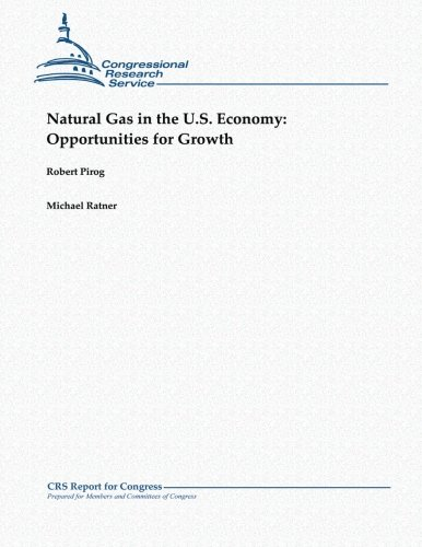 9781481063876: Natural Gas in the U.S. Economy: Opportunities for Growth