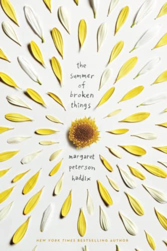 9781481417655: The Summer of Broken Things