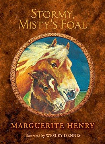 9781481425612: Stormy, Misty's Foal