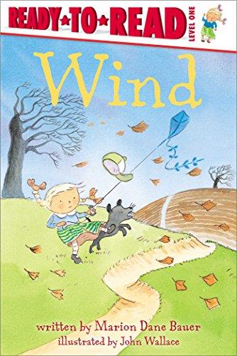 9781481462150: Wind