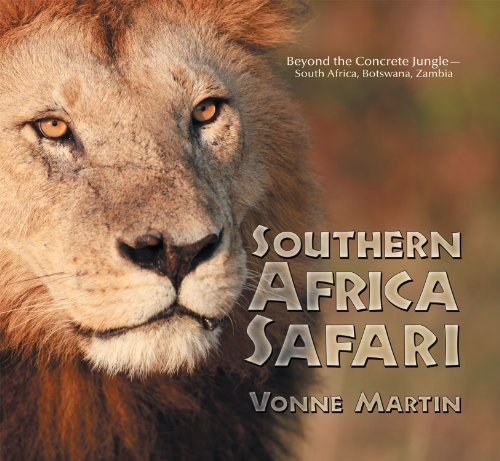 9781481712583: Southern Africa Safari:Beyond the Concrete Jungle
