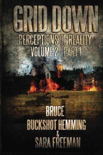 9781481856683: Grid Down Perceptions Of Reality Vol 2 Book 1: Vol 2 Book 1