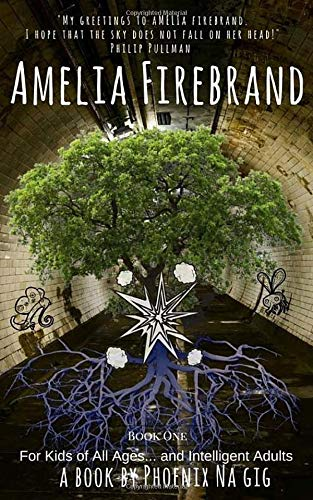 9781481895460: Amelia Firebrand and the Uglies: 1 (The Fantastic Borderland of Things)