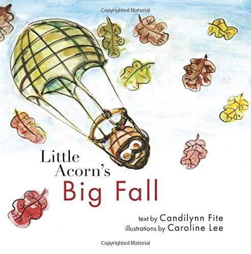 9781481961271: Little Acorn's Big Fall