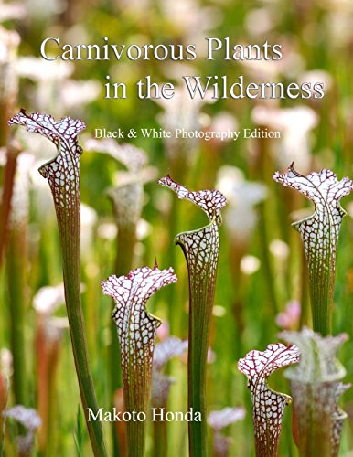 9781482087697: Carnivorous Plants in the Wilderness: Black & White Photography Edition