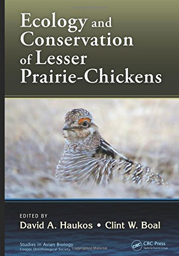 9781482240221: Ecology and Conservation of Lesser Prairie-Chickens (Studies in Avian Biology)