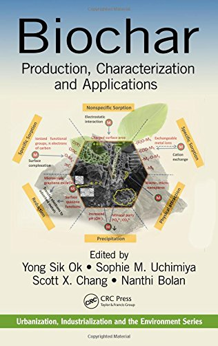 9781482242294: Biochar: Production, Characterization, and Applications (Urbanization, Industrialization, and the Environment)