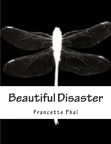 9781482314151: Beautiful Disaster: 1 (The bet)