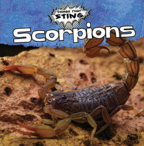 9781482417159: Scorpions (Things That Sting)