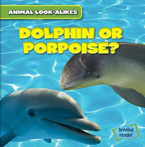 9781482427141: Dolphin or Porpoise? (Animal Look-alikes)