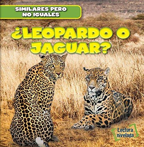 9781482432619: Leopardo o jaguar?/ Leopard or Jaguar? (Similares Pero No Iguales/ Animal Look-alikes) (Spanish Edition)