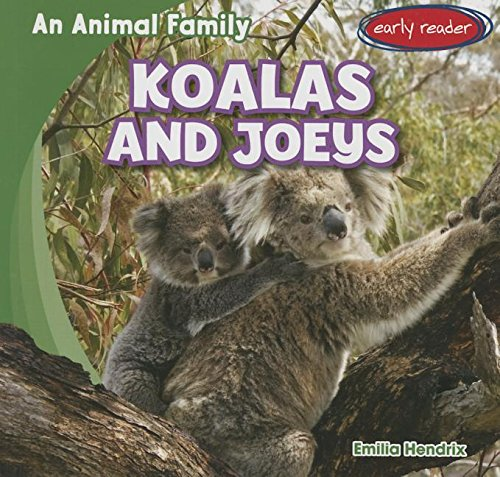 9781482437799: Koalas and Joeys (Animal Family)