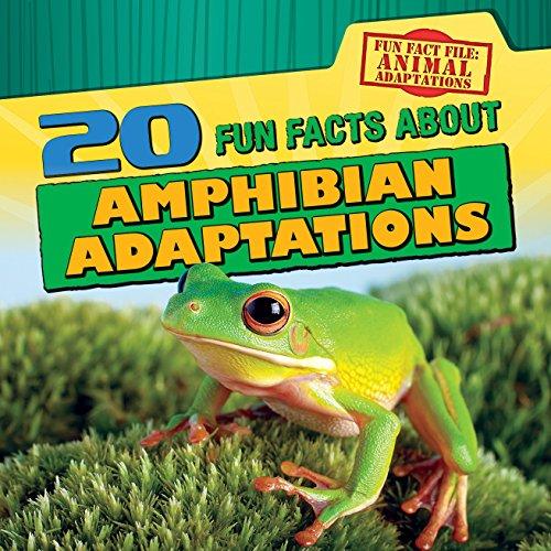 9781482444476: 20 Fun Facts about Amphibian Adaptations (Fun Fact File: Animal Adaptations)
