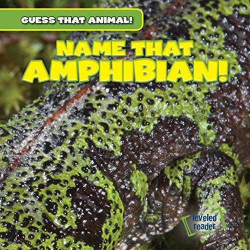 9781482447484: Name That Amphibian! (Guess That Animal!)