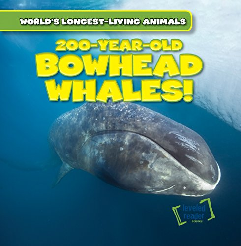 9781482456318: 200-Year-Old Bowhead Whales! (World's Longest-Living Animals)