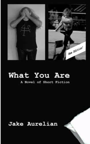 9781482543711: What You Are: A Novel of Short Fiction