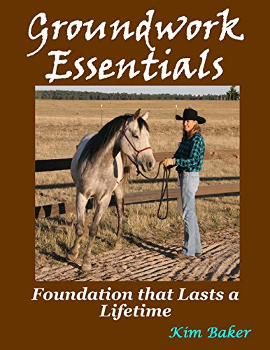 9781482606652: Groundwork Essentials: Foundation that Lasts a Lifetime