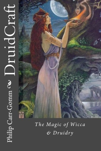 9781482769265: DruidCraft: The Magic of Wicca & Druidry