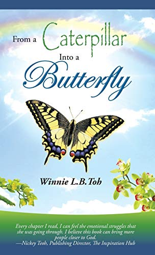 9781482828511: From a Caterpillar into a Butterfly