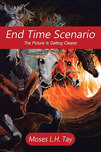 9781482832808: End Time Scenario: The Picture Is Getting Clearer