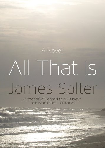 9781482926224: All That Is: A Novel
