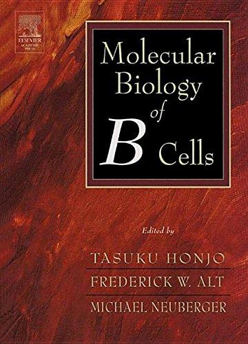 9781483299761: Molecular Biology of B Cells