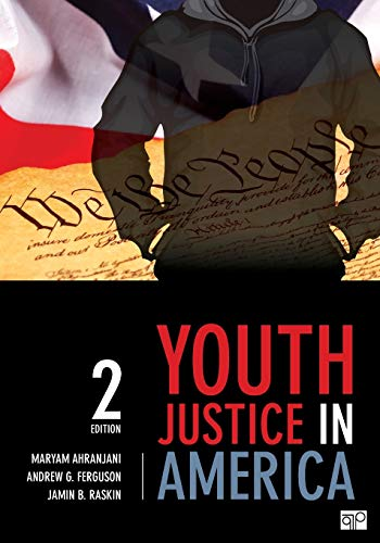 9781483319162: Youth Justice in America
