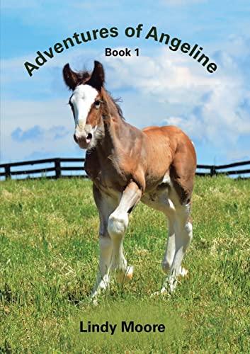 9781483438597: Adventures of Angeline: Book 1