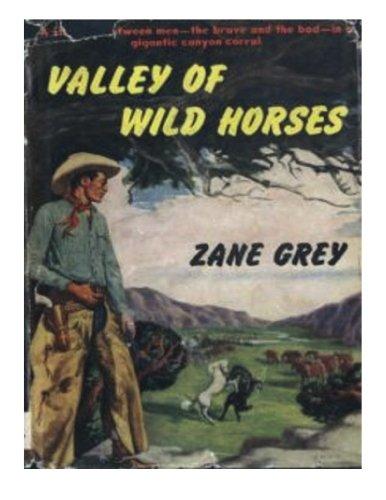 9781483949109: Valley of Wild Horses