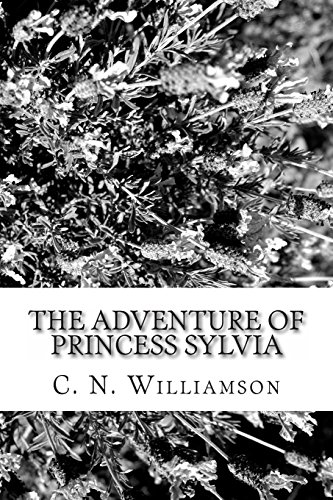 9781484159415: The Adventure of Princess Sylvia