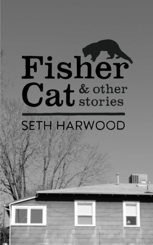 9781484168424: Fisher Cat and other stories