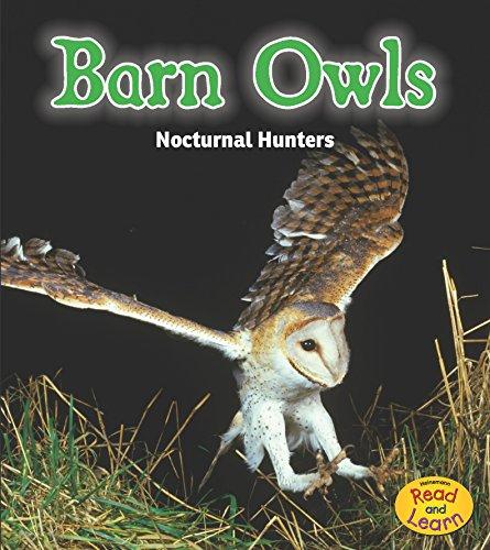 Barn Owls: Nocturnal Hunters (Night Safari): Rissman, Rebecca