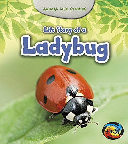 Life Story of a Ladybug (Animal Life Stories): Guillain, Charlotte