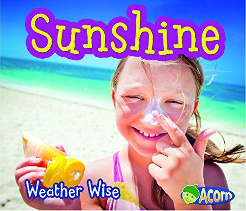 9781484605479: Sunshine (Weather Wise)