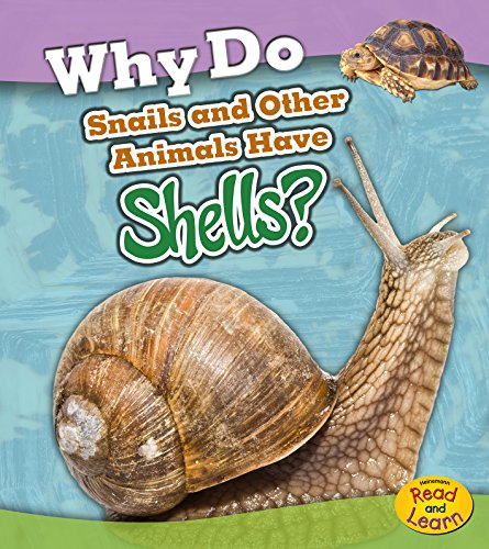 9781484625415: Why Do Snails and Other Animals Have Shells? (Animal Body Coverings)