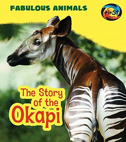 9781484627129: The Story of the Okapi (Fabulous Animals)