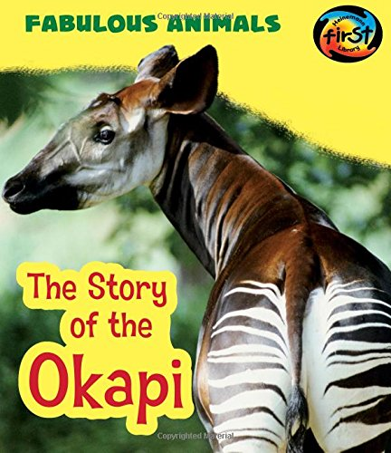 9781484627167: The Story of the Okapi (Fabulous Animals)