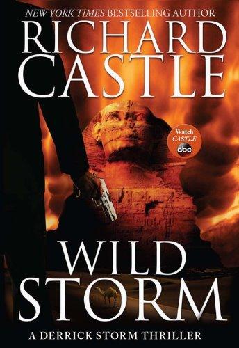 9781484711422: Wild Storm: A Derrick Storm Thriller