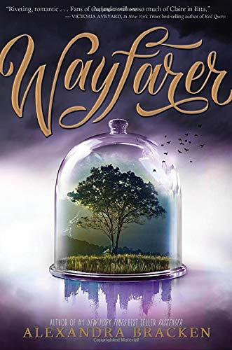 9781484715765: Wayfarer (Passenger)